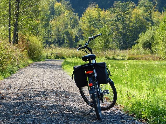 העלאת אופניים חשמליים וקורקינטים לטיסה